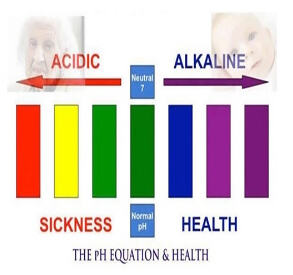Acid vs Alkaline