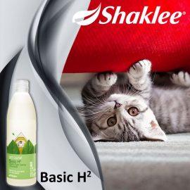 Shaklee Basic H