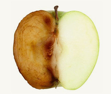 Free Radical Damage to Apple