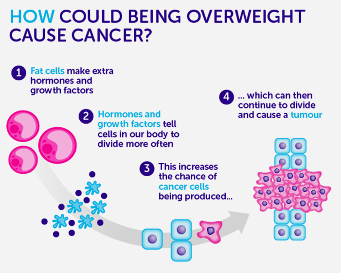 Health Conditions - Obesity and Cancer