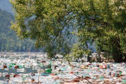 Water bottles in River